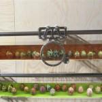 museumsblog: ethnografisches museum krakau: Eier mit Lupe