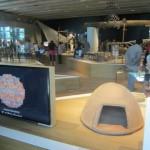 museumsblog: muCEM, 1. teil galerie de la méditerranée